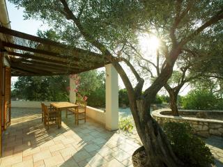 Villa Agave - Paxos vacation rentals