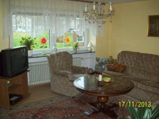 Nice Condo with Internet Access and Central Heating - Morbach vacation rentals