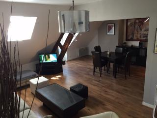 Bright Condo with Porch and Television in Auxerre - Auxerre vacation rentals