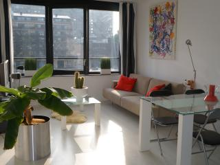Classic Harbour-front apartment - Rotterdam vacation rentals