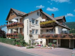6 bedroom Resort with Internet Access in Bad Brückenau - Bad Brückenau vacation rentals