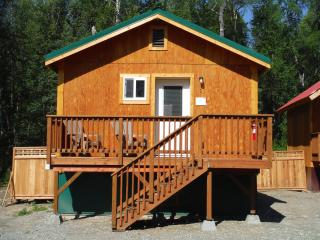 Beautiful 1 bedroom Talkeetna Bungalow with Internet Access - Talkeetna vacation rentals