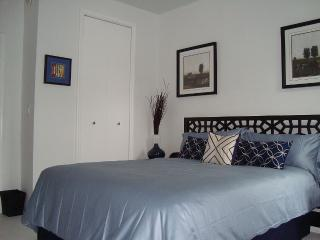 Charming 1 Bedroom Apartment in Quiet Cul-de-sac - Brooklyn vacation rentals