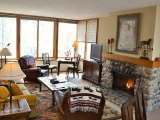 Bright 2 bedroom Apartment in Wilson with Deck - Wilson vacation rentals