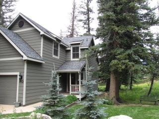 Windwalker Lodge - Estes Park vacation rentals