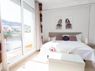 House Playa Costa Adeje - Playa de Fanabe vacation rentals