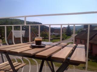 Meublé de Tourisme Heidelbeere - Niederbronn-Les-Bains vacation rentals