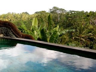 3 bedroom Bed and Breakfast with Deck in Sayan - Sayan vacation rentals