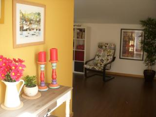 STUDIO in CENTRAL PORTUGAL withTerrace and BBQ - Curia vacation rentals
