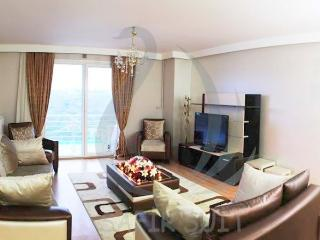 ISTANBUL SAFRAN SUITS - Istanbul vacation rentals