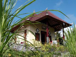 Maha Neka Guest House - Sidemen vacation rentals