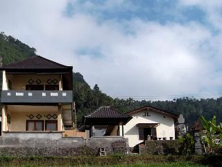 Bukit Luah-sidemen guestroom - Sidemen vacation rentals
