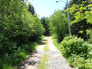 1 bedroom Cottage with Internet Access in Margaree Forks - Margaree Forks vacation rentals