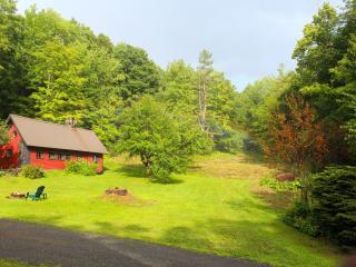 Charming Barnard Cabin rental with Internet Access - Barnard vacation rentals