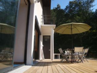 Bright 4 bedroom House in Hossegor - Hossegor vacation rentals