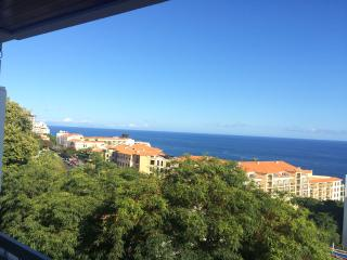 Lido Mar - Sea Views & Wonderfull Views - Sao Martinho vacation rentals
