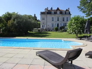Sunny 10 bedroom Mortagne-sur-Gironde Chateau with Internet Access - Mortagne-sur-Gironde vacation rentals