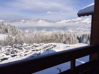 Spacious one bed ski apartment - Morillon vacation rentals