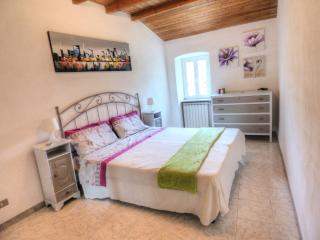 Nice Townhouse with Microwave and Washing Machine - Carrodano vacation rentals