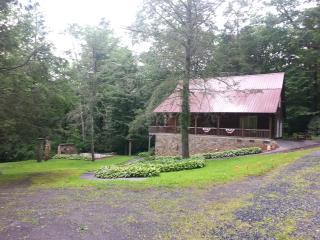 ZHollar Log Cabin - West Jefferson vacation rentals