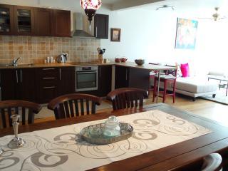 3 bedroom Apartment with Internet Access in Reykjavik - Reykjavik vacation rentals