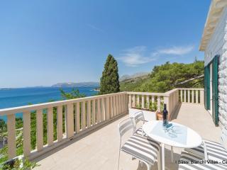 Beautiful 5 bedroom Villa in Cavtat - Cavtat vacation rentals