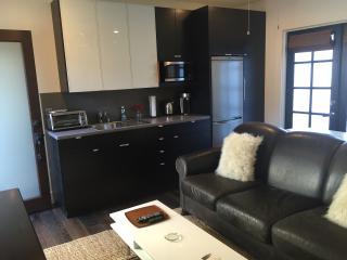 Los Feliz~ Private Modern Guest Suite/Metro Close - Los Angeles vacation rentals