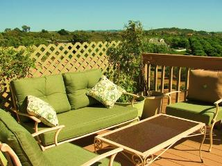 1bedroom, 1 Bath, Full Kitchen, Deck W/ Mountain - Pacific Beach vacation rentals