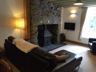 Lovely Cottage with Internet Access and Television - Beddgelert vacation rentals