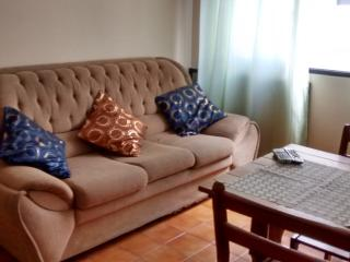 Comfortable Apartament close to  the Beach - Praia Grande vacation rentals