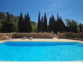 Charming House with Pool in private Domaine - Thezan-des-Corbieres vacation rentals