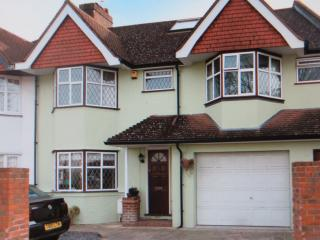 Great accommodation for Rugby World cup - Twickenham vacation rentals