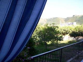 Vacanza al verde di Tropea ( trilocale 2) - Tropea vacation rentals