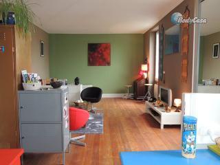 Apartment/Flat in Nantes, at Krol's place - Nantes vacation rentals
