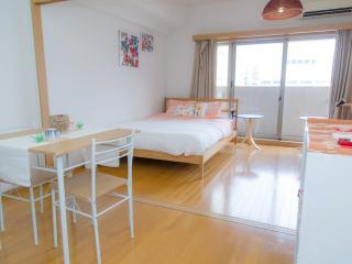 Heart of Tokyo+Spacious+WIFI+5min - Chiyoda vacation rentals