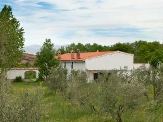 Rooms for rent Sierra Nevada Spain - Province of Granada vacation rentals