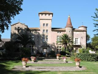Chateau Saint-Martin-de-la-Garrigue - Pezenas vacation rentals