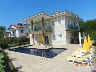 DETACHED VILLA IN DALYAN WITH PRIVATE POOL/JACUZZI - Dalyan vacation rentals