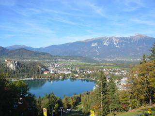 Nice 3 bedroom House in Bled - Bled vacation rentals