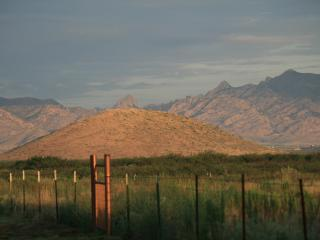 Ranch ~ Bird Paradise Ranch 360 MT View~ Pearce AZ - Pearce vacation rentals