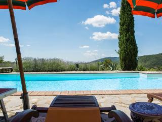 Perfect Villa with Internet Access and Satellite Or Cable TV - Castiglion Fiorentino vacation rentals