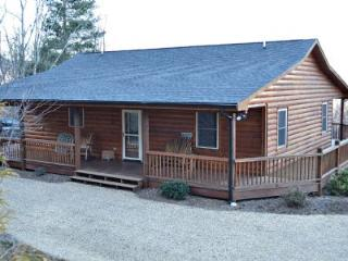 Perfect 2 bedroom Cabin in West Jefferson - West Jefferson vacation rentals