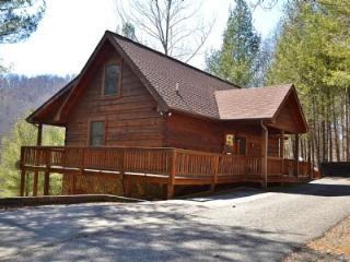 Nice Cabin with Deck and Internet Access - Warrensville vacation rentals