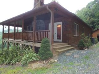 4 bedroom Cabin with Deck in Warrensville - Warrensville vacation rentals