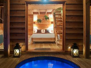 Cabane du Bois des Nauzes - Marmande vacation rentals