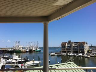 Best View in Cape May - Cape May vacation rentals
