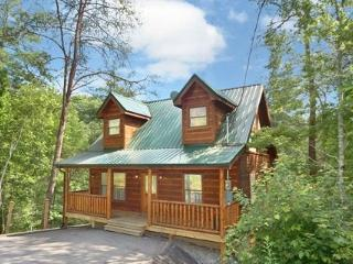 Perfect Cabin with Internet Access and A/C - Gatlinburg vacation rentals