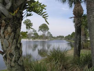 Just what you want! Perfect for golf, nature lover - Sarasota vacation rentals
