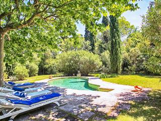 Lovely Villa with Internet Access and DVD Player - Avignon vacation rentals