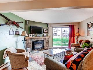 Cozy Condo with Satellite Or Cable TV and Microwave - Steamboat Springs vacation rentals